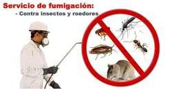 Fumigaciones - Cucarachas - Roedores - Y Todo Tipo De Plagas