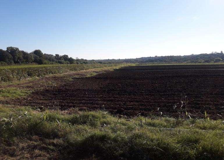 En venta hectáreas en zona Acceso Norte, diferentes destinos; únicas por su altura y la riqueza de su suelo