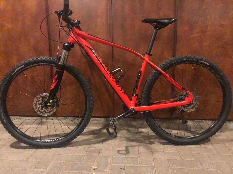 Bicicleta Mountain Specialized Rockhopper expert R29 talle L