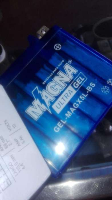 Vendo Bateria Biwis 100