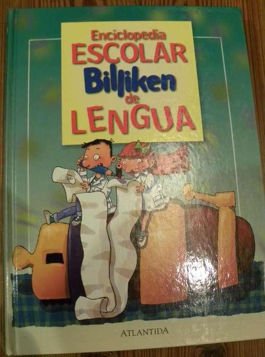 Enciclopedia Escolar Billiken de Lengua excelente ayuda para los niños