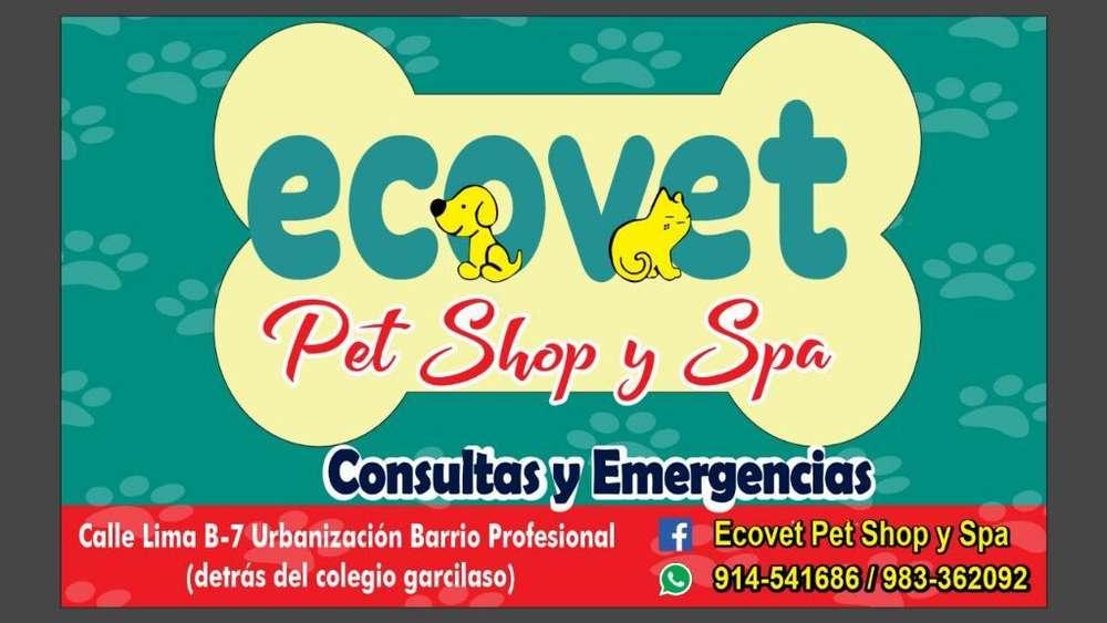 Veterinaria Ecovet en Cusco
