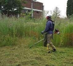 Desmalezados de terrenos, predio, parques, jardines, campos x hectarea