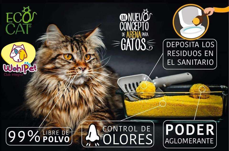 Arena Ecologica par Gatos Ecocat
