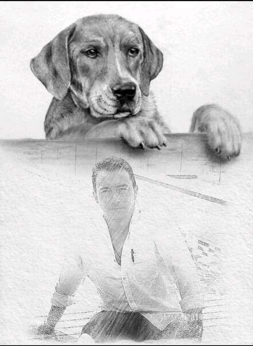 <strong>adiestramiento</strong> Canino Romero Sanchez sin Golpes Garantia!!!! DOMICIIO EN BOGOTA