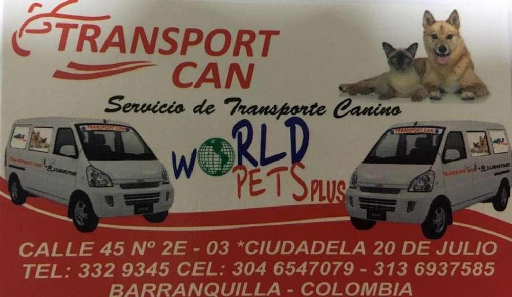 Servicio de Transporte Canino