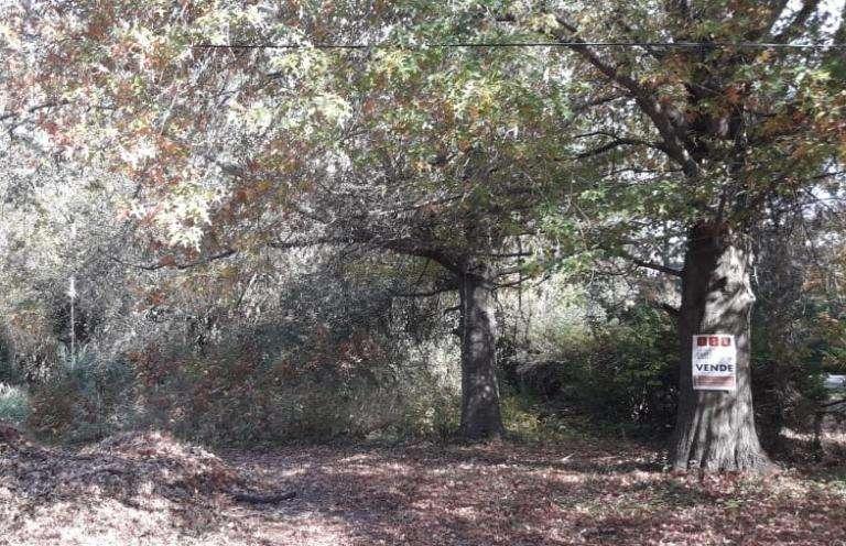 Lote En Barrio Parque Natura Los Cardales