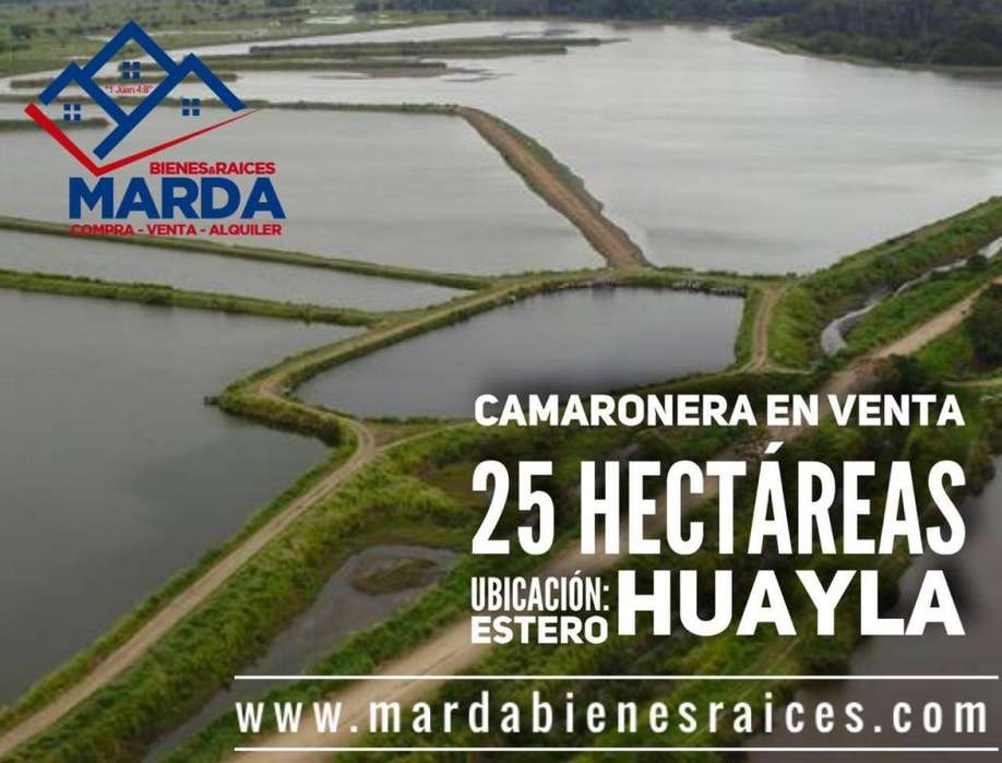 Camaronera Estero Huayla