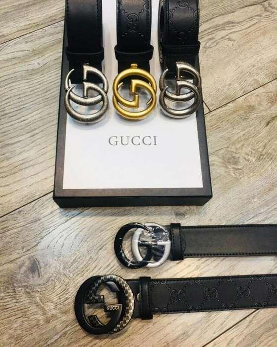 Nueva Coleccion de Correas Gucci