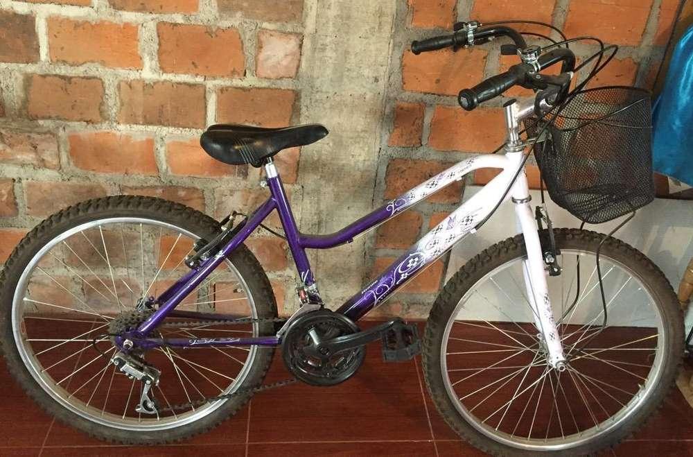 Bicicleta Dama info 3177335758