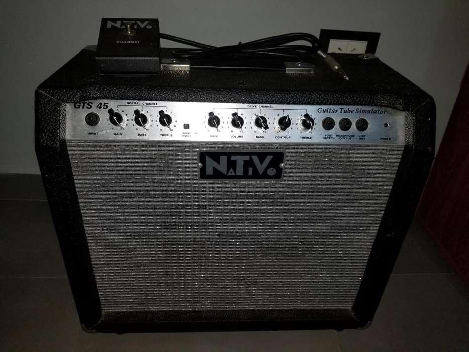 Amplificador de guitarra Nativo GTS 45