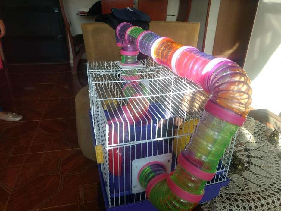 Vendo <strong>jaula</strong> para Hamsters Completa Nueva