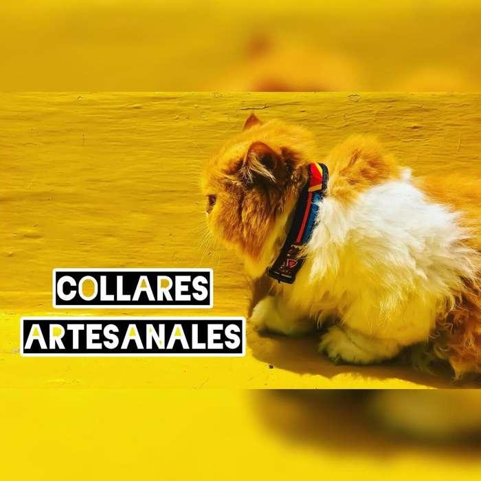 Collares para Mascotas / Perros / Gatos / Accesorio