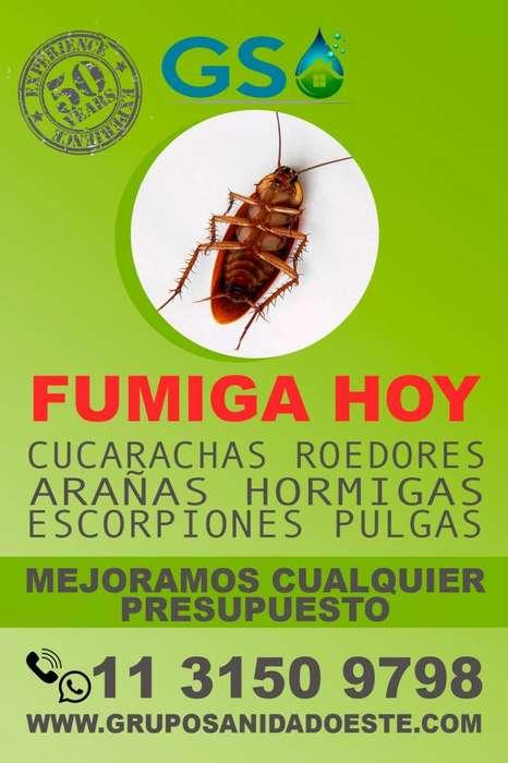 FUMIGACION RATAS, CUCARACHAS, PULGAS TODO EL PAIS