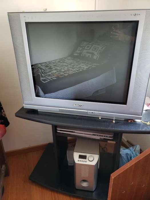 Tv. Mesa de Tv. Reproductor Dvd. Minicom