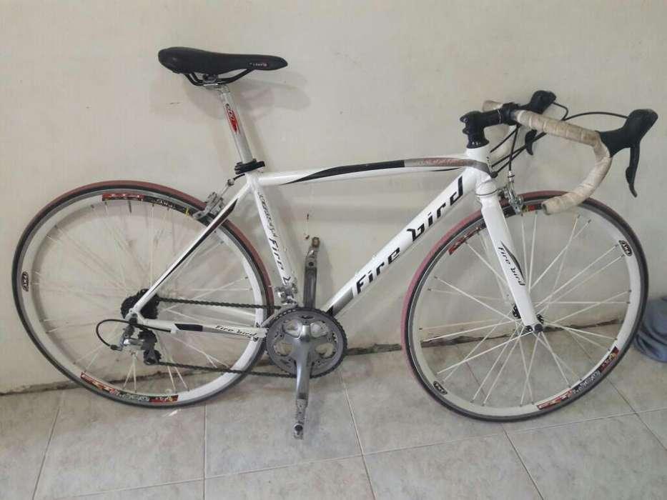 Bicicleta Exelente Fird Brid