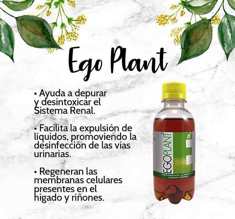 ABC EGO PLANT OMNILIFE DISTRIBUIDORA INDEPENDIENTE