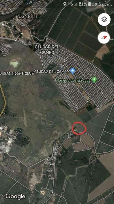 lote campestre 29x10m 2mi de cali atrás de ciudad del <strong>campo</strong>