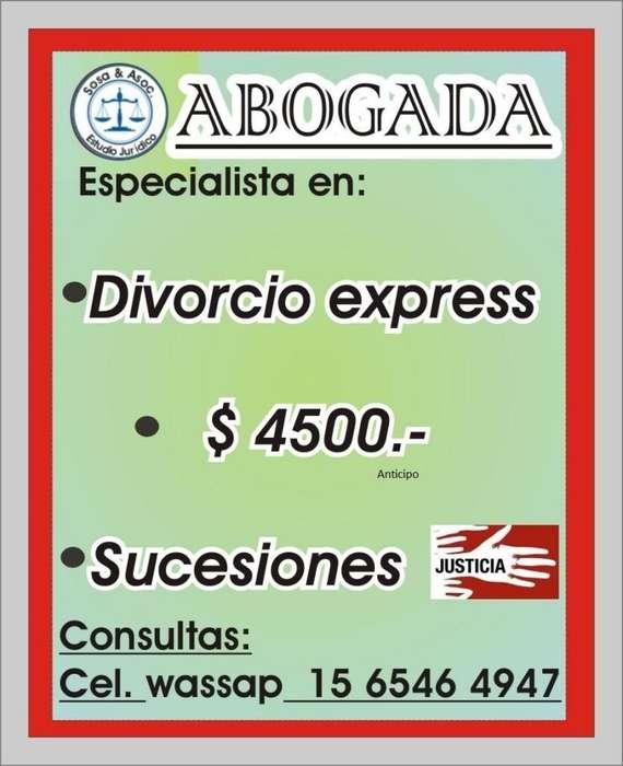 ABOGADO CAPITAL FEDERAL MICRO CENTRO. DIVORCIO EXPRESS