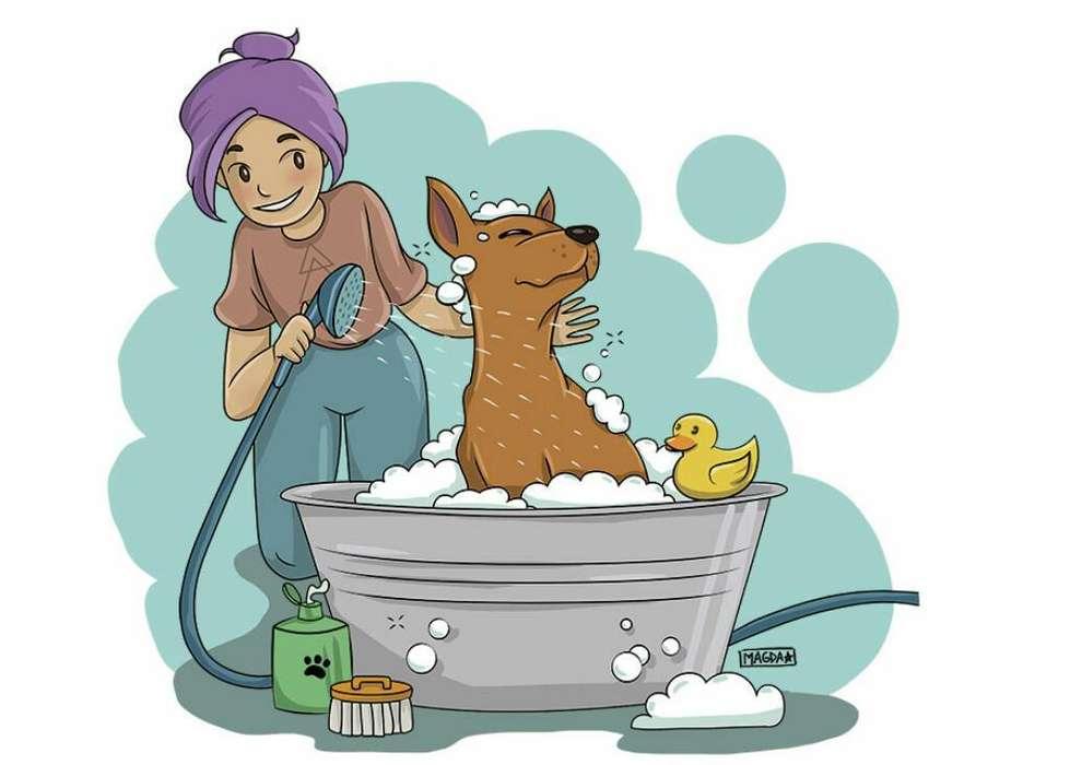 Peluquerías Higiénicas para Mascotas