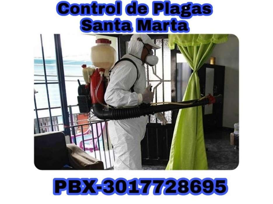 Fumigaciones en Santa Marta