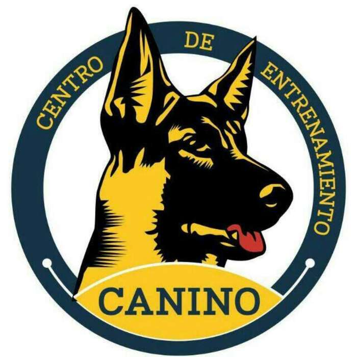 <strong>adiestramiento</strong> Canino