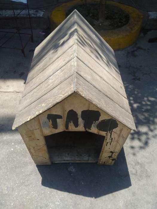 Remato Casa de Perro
