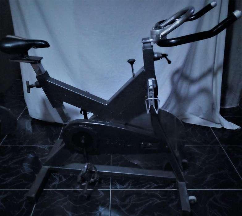 venta de bicicleta de gimnasio profesional