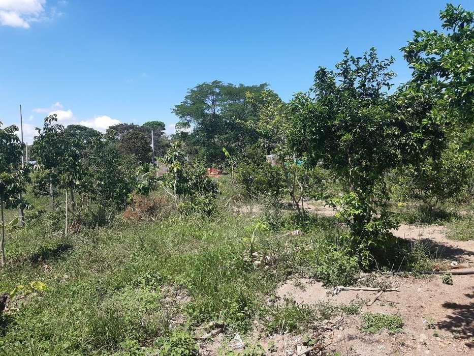 Vendo Permuto Terreno en El Juncal