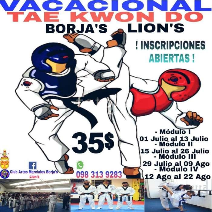 Cursos Vacacionales de Taekwondo