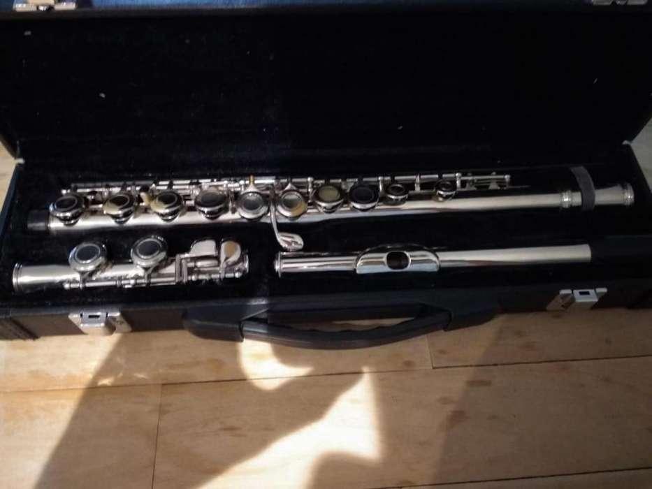 Flauta Traversa Parquer de estudio