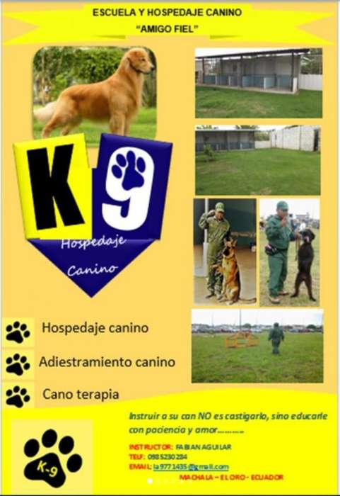 <strong>adiestramiento</strong> Canino K-9