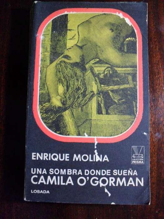 UNA SOMBRA DONDE SUEÑA CAMILA OGORMAN ENRIQUE MOLINA EDICIONES LOSADA 315 PAGINAS