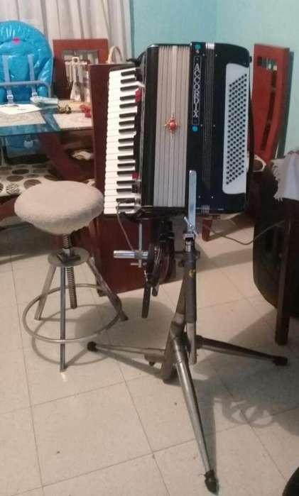 VENDO ACORDEON <strong>organo</strong> ELECTRONICO 120 BAJOS