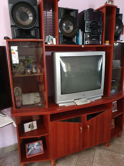 Vendo Mueble de Televisor Y Equipo