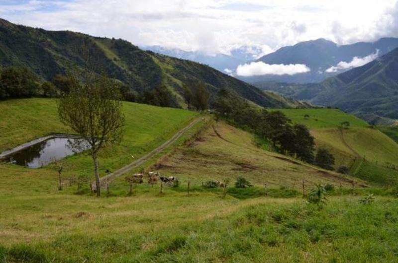 Venta de Hacienda Ganadera / 180 Hetáreas, a 35 Klm de Quito