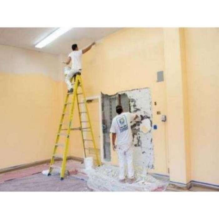 Pintor de Casa Y Departamento