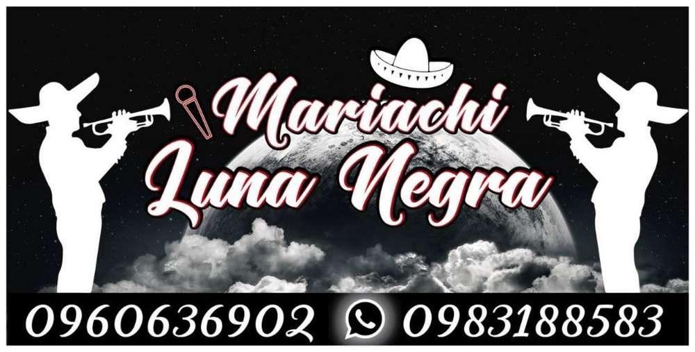 Mariachis en Quito Precios Biloxi Mena2