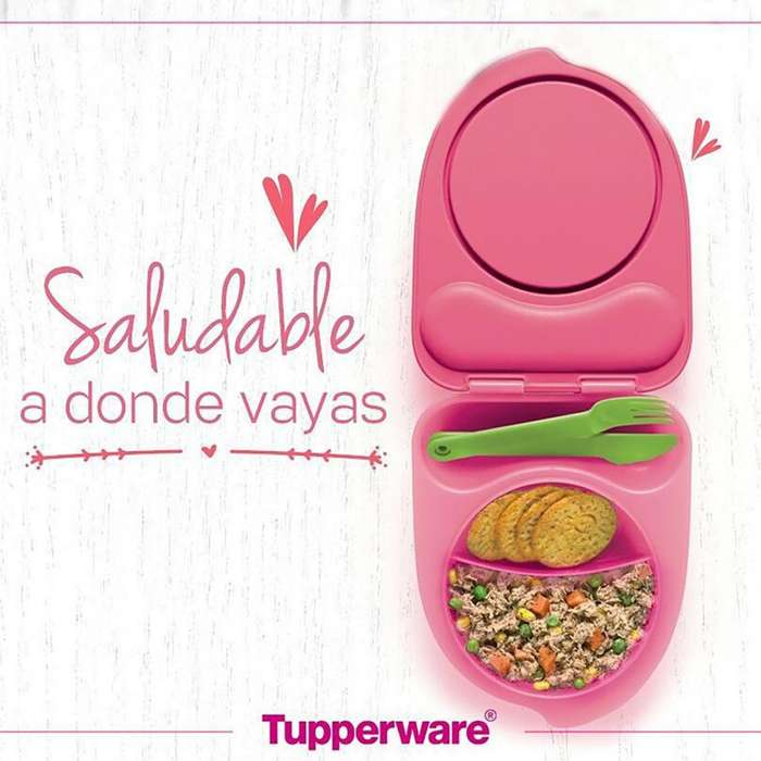 Tupperware Plato Lunch System
