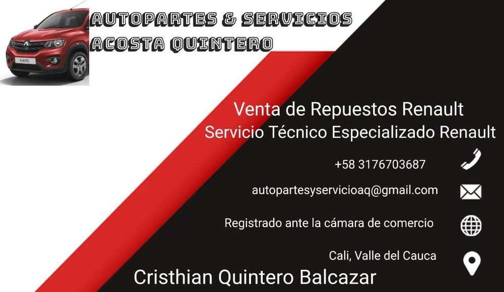 Servicio Técnico Renault Venta Repuestos