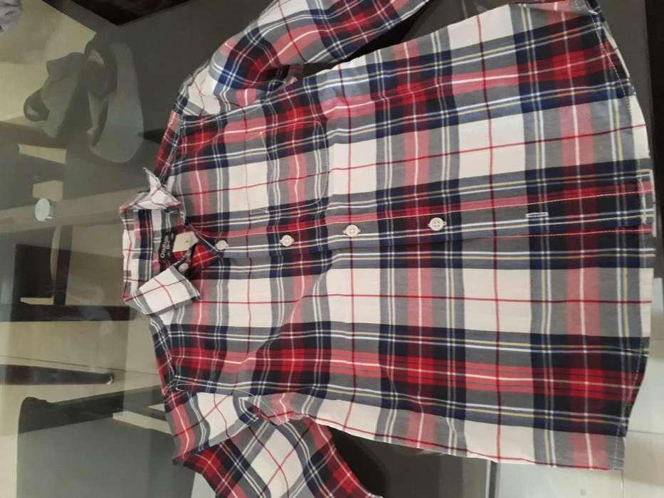 Camisa Americana