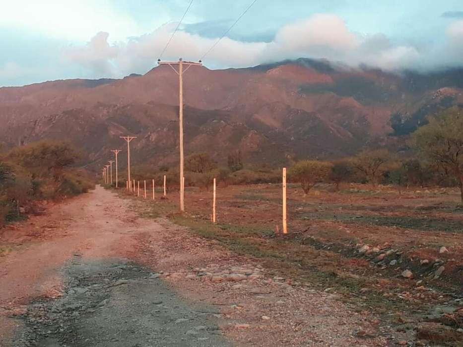 Titular Vende Terrenos en La Punta