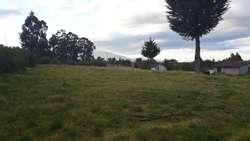 Vendo Terreno con Casa en Aloasi