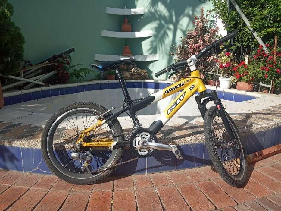 Bicicleta Gw Arrow 20 Nueva