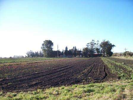 Fracción de campo de 9 hectáreas zona Laguna de los Padres
