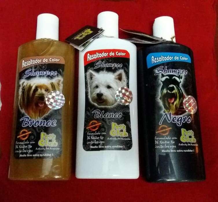 Shampoo Resaltador de Color