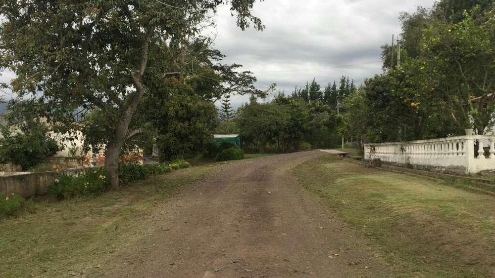 Arriendo Terreno en Puembo