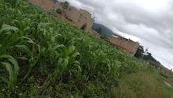 Lote 502 Mts Catambuco