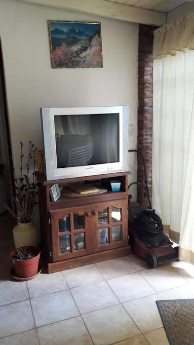 Vendo televisor 29