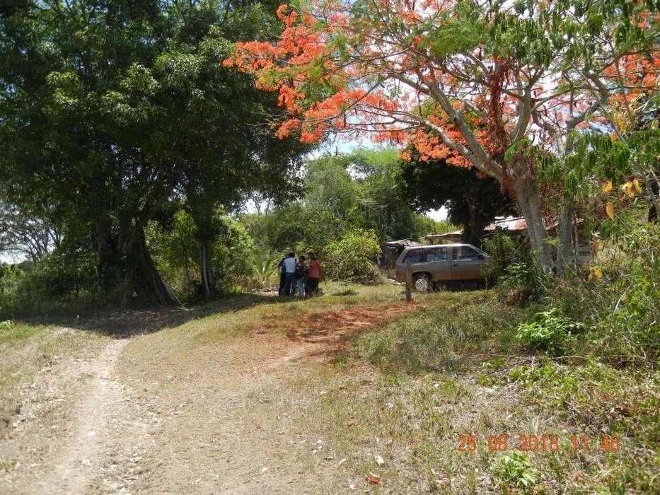 Hermoso Lote Entrada Carreteable frente al club de Mesa de Yeguas, 3.900m2, 190.000.00 Negociables Vendo o Permuto